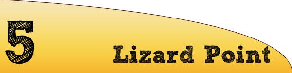 lizard_point